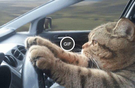 na-autostradzie