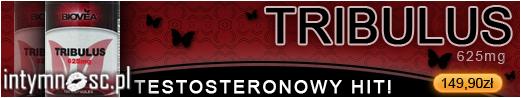 Tribulus - testosteron w tabletkach!